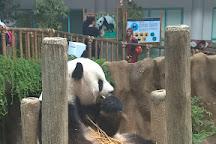 Zoo Negara, Ampang, Malaysia