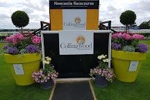 Newcastle Racecourse, Newcastle upon Tyne, United Kingdom