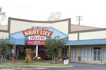 Nashville Nightlife Theater, Nashville, United States