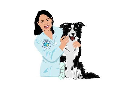 Emergency Veterinarians in Abbottstown, PA