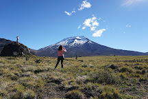 Volcan Lonquimay, Lonquimay, Chile