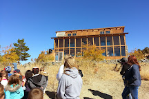 Animal Ark, Reno, United States