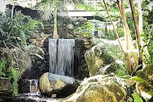 Mackay Regional Botanic Gardens, Mackay, Australia