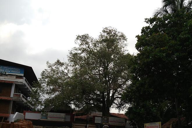 Chowallurpady Siva Temple, Guruvayur, India