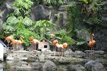 Jawa Timur Park 2, Batu, Indonesia