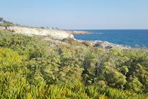 Glyki Nero Beach, Ayia Napa, Cyprus