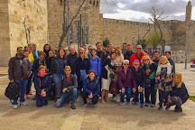 Joni Sanderovitch Tour Guide, Jerusalem, Israel