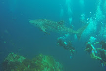 Chic Diving, Koh Tao, Thailand