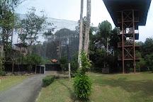 Melaka Bird Park, Melaka, Malaysia