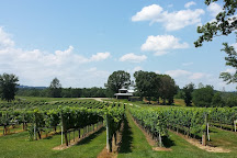Nottely River Valley Vineyards, Murphy, United States
