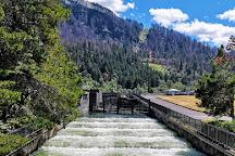 Bonneville Lock & Dam, Cascade Locks, United States