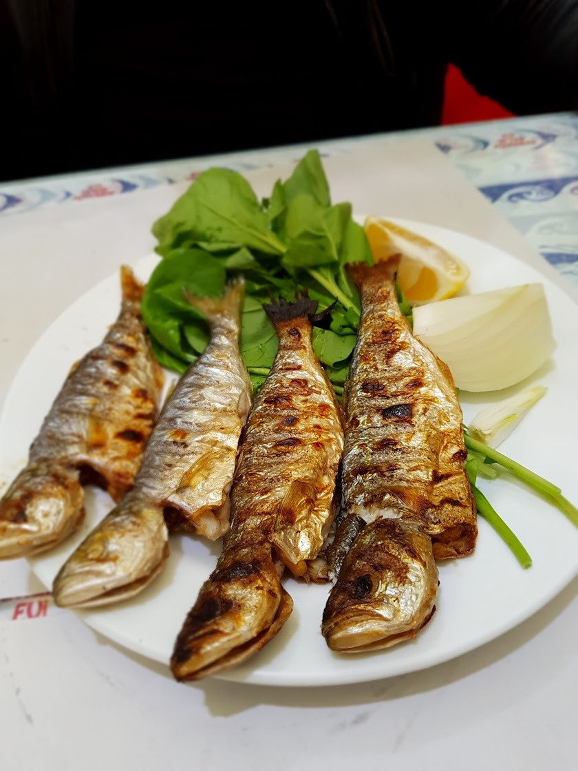 Akın Balık Resim 5