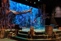 Imagination Stage, Bethesda, United States