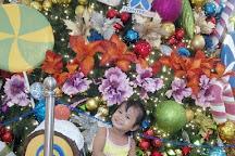 J Centre Mall, Mandaue, Philippines