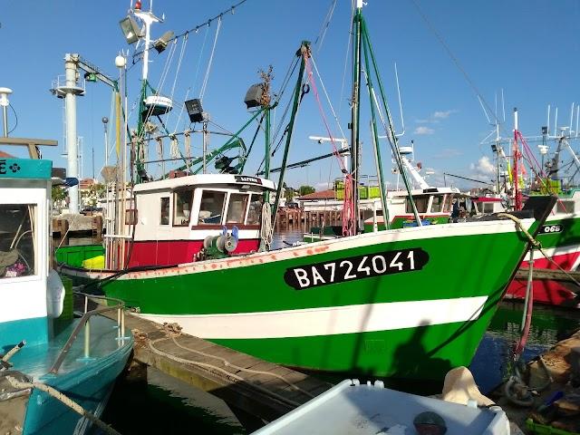 Port de Plais. de Saint-Jean-de-Luz