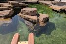 Como Park Zoo & Conservatory
