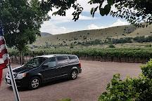La Esperanza Vineyard and Winery, Silver City, United States