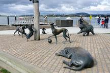 Tauranga i-SITE Visitor Information Centre, Tauranga, New Zealand