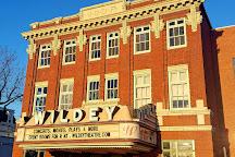 Wildey Theater, Edwardsville, United States