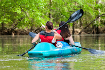 Honey Island Kayak Tours, Pearl River, United States