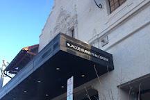 Jacob Burns Film Center, Pleasantville, United States