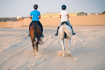 AL Dhabi Horse Riding, Dubai, United Arab Emirates