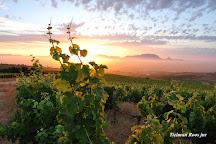 Mooiplaas Wine Estate, Stellenbosch, South Africa
