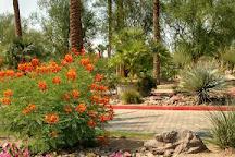 Marriott's Shadow Ridge Golf Club, Palm Desert, United States