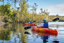 Everglades Adventures Kayak & Eco Tours, Everglades City, United States