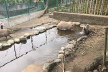 Hitachi City Kamine Zoo, Hitachi, Japan