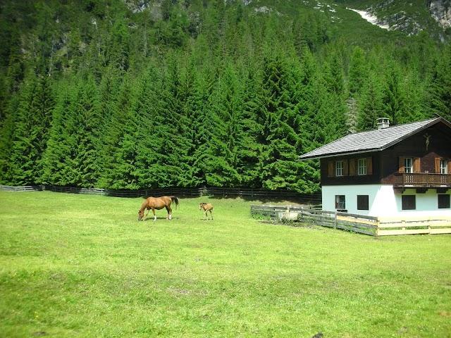 Naturpark Sextner Dolomiten