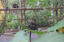 Endangered Primate Rescue Centre, Cuc Phuong National Park, Vietnam
