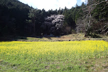 Tempaku Park, Nagiso-machi, Japan