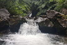 Maunawili Falls, Kailua, United States