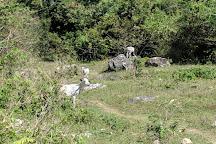 Cuevas del Pomier, San Cristobal, Dominican Republic