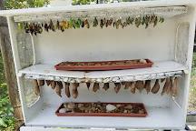The Butterfly Farm (La Ferme des Papillons), Quartier D'Orleans, St. Maarten-St. Martin