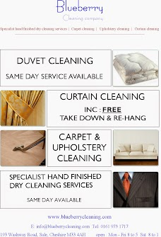 Blueberry Dry Cleaning Company