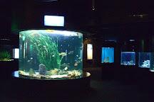 SEA LIFE Busan Aquarium, Busan, South Korea