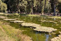 Parque Isabel Riquelme, Lautaro, Chile