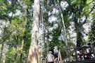 Area de Conservacion Regional Comunal Tamshiyacu Tahuayo