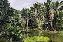 Jardim Botânico do Rio de Janeiro, Rio de Janeiro, Brazil