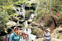 Asheville Hiking Tours, Asheville, United States