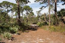 Yamato Scrub Natural Area, Boca Raton, United States