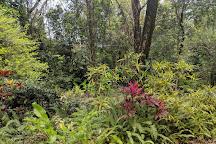 Mamiku Gardens, St. Lucia