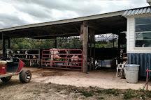 Happy Cow Creamery, Pelzer, United States