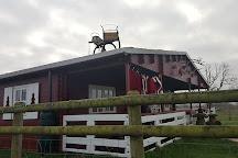 Blithbury Reindeer Lodge, Rugeley, United Kingdom