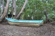 Iguana Tours, Manuel Antonio, Costa Rica
