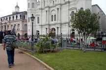 Nola Tour Guy, New Orleans, United States