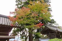 Daigoji Temple, Fukuchiyama, Japan