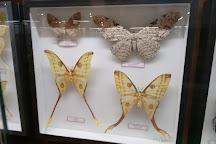 Regional Natural History Museum of Plovdiv, Plovdiv, Bulgaria